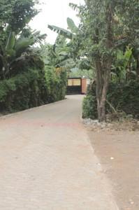 wayside hotel walkway path arusha tanzania